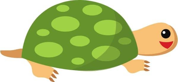 Graphic of a turtle representing slow website page load time.