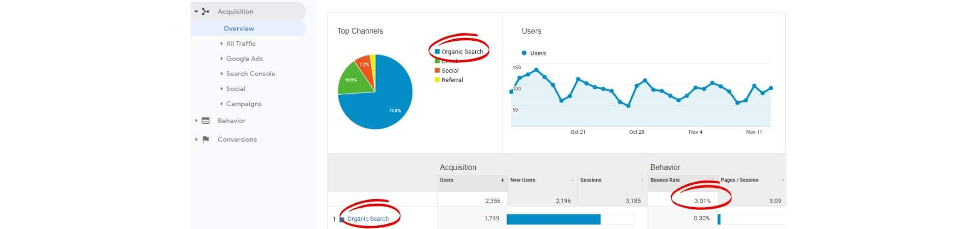 Website SEO Analytics Data
